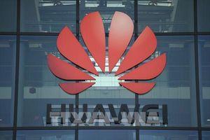 Anh dự kiến loại bỏ các thiết bị mạng 5G của Huawei trong 5 năm tới