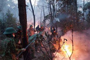 Cháy rừng ở Nghệ An nghi bùng phát từ hành động... đốt rác