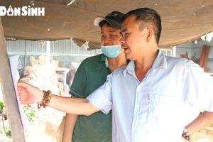 TP.HCM: Chú trọng đào tạo nâng cao tay nghề cho lao động nông thôn