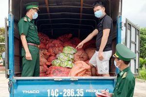 Bắt giữ vụ vận chuyển 1,5 tấn chân gà trái phép qua biên giới