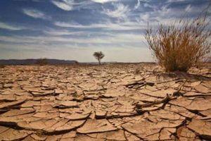 Diễn đàn ''Thanh niên hành động vì khí hậu''