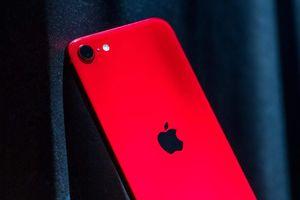 iPhone SE 2020 cũ giá từ 8 triệu đồng về Việt Nam