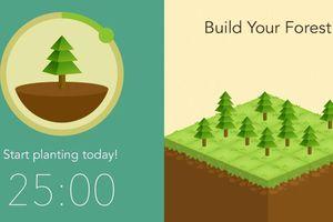 Trò chơi giúp 'cai nghiện' điện thoại, truyền cảm hứng trồng cây xanh