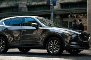 'Hạ nhiệt' tháng 7, các mẫu SUV đua nhau giảm giá, cao nhất tới 200 triệu đồng