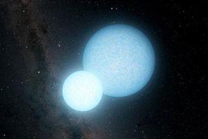 Sự sống Trái Đất có thể đến từ 'xác sống không gian'