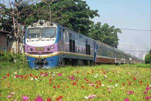 Đường sắt triển khai bán vé tàu, thanh toán trực tuyến trên smartphone từ 15/7