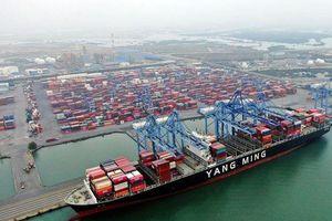 Nâng cao hiệu quả khai thác cụm cảng Cái Mép - Thị Vải