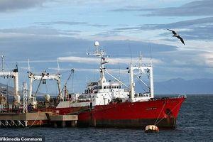 Hy hữu: Tàu cá hóa ổ dịch COVID-19 dù không vào đất liền suốt một tháng