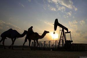 Một năm khó khăn cho OPEC và các đại gia dầu lửa