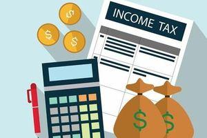 Nhìn lại công tác thanh tra, kiểm tra trong lĩnh vực thuế 6 tháng đầu năm
