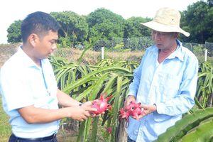 Hội Nông dân xã Hồng Thái Đông chung tay xây dựng nông thôn mới