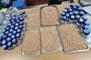 19 kg ma túy tại sân bay Nội Bài