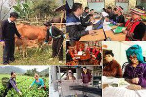 Thành lập BCĐTƯ Chương trình MTQG phát triển KTXH vùng đồng bào dân tộc thiểu số