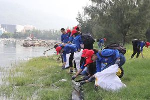 Chi hơn 27 tỷ đồng xóa ô nhiễm tại âu thuyền Thọ Quang, Đà Nẵng