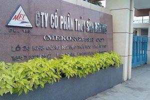 Không báo cáo về việc bán cổ phiếu quỹ, Thủy sản Mekong bị xử phạt