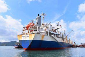 TKV tiếp nhận chuyến than nhập khẩu đầu tiên từ Hoa Kỳ