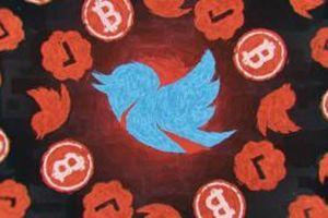 Chủ mưu vụ hack tài khoản Twitter người nổi tiếng tự nhận có tay trong, kiếm được ít nhất 2 tỷ đồng từ vụ việc