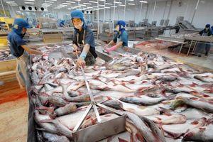 Xuất khẩu thủy sản năm 2020 phấn đấu đạt 10 tỷ USD