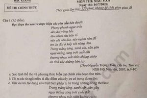 Đề thi Ngữ văn tuyển sinh lớp 10 vào THPT tỉnh Bắc Giang năm 2020