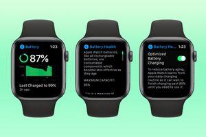 Cách kiểm tra sức khỏe pin Apple Watch trên watchOS 7