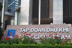 Đầu tư nước ngoài: Vietnam Airlines thua lỗ, Vinachem bế tắc dự án 500 triệu USD
