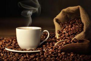 Giá cà phê hôm nay 20/7: Tăng nhẹ 100 đồng, cao nhất ở mức 33.200 đồng/kg