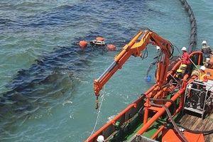 Xây dựng hành lang pháp lý xử phạt vi phạm môi trường biển