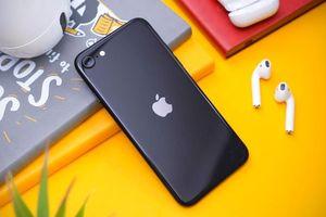 Apple đại thắng với iPhone SE 2020: Lôi kéo thành công 26% người dùng Android sang iOS!