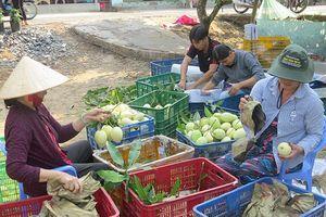 Liên kết chuỗi giá trị giúp giảm chi phí, nâng cao giá trị nông sản