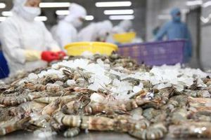 674 doanh nghiệp thủy sản Việt Nam được cấp phép xuất khẩu vào Đài Loan