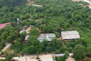 Xin dự án trồng dược liệu rồi phân lô, bán nền ở Vĩnh Phúc: Chi tiền hợp thức hóa nguồn gốc đất bất thành