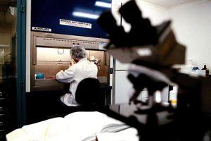 Trung Quốc là đối tác nghiên cứu khoa học hàng đầu của Australia