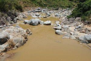 Nhức nhối nạn 'vàng tặc' ở Quảng Nam