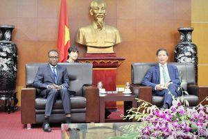 Thúc đẩy hợp tác kinh tế, thương mại với các nước nói tiếng Pháp