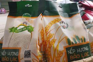Cao Bằng: Xây dựng thương hiệu nếp hương Bảo Lạc