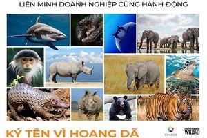 Các tổ chức môi trường hoan nghênh động thái quyết liệt của Chính phủ Việt Nam