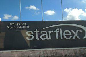 Bà Rịa: Công ty Starflex Việt Nam bị xử phạt vì xây dựng không phép gần 8000m2
