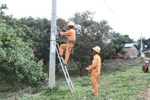 Đắk Lắk: Đảm bảo an toàn hành lang lưới điện trong mùa mưa bão