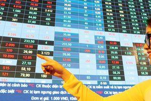 Điểm sáng trong vùng lặng thông tin trên thị trường chứng khoán