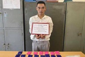 Bắt giữ đối tượng vận chuyển ma túy từ biên giới Việt-Lào về Hà Nội