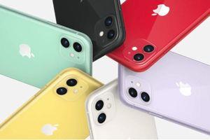 Apple chính thức sản xuất Iphone 11 tại Ấn Độ
