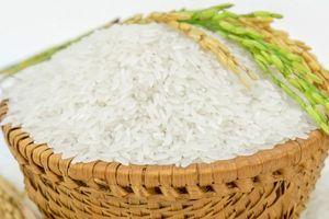 Giá lúa gạo ngày 25/07: Tăng nhẹ 100 - 200 đồng/kg