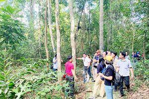 Khám phá vườn di sản ASEAN