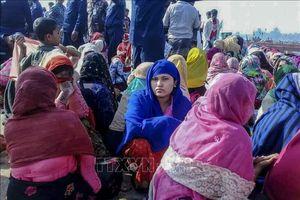 Hàng chục người tị nạn Rohingya mất tích ngoài khơi Malaysia