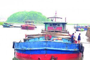 Vận tải sông pha biển 'chìa khóa' đánh thức tiềm năng đường thủy nội địa