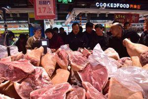 Dịch tả lợn châu Phi lan rộng, FAO- OIE ra cảnh báo nóng