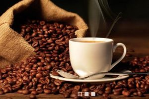 Một doanh nghiệp cà phê báo lợi nhuận 6 tháng vỏn vẹn hơn 200 ngàn đồng