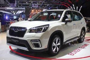 Chỉ xe Subaru Forester ở thị trường Việt Nam mới gặp lỗi 'nổi đèn báo kiểm tra động cơ'