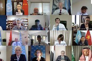 Hội đồng Bảo an họp về tình hình Mali
