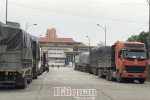 Lạng Sơn: Tăng cường giải pháp thúc đẩy xuất nhập khẩu hàng hóa